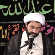 The Spiritual Struggle of Karbala by Sheikh Shomali, Muharram 2011 - Part 7